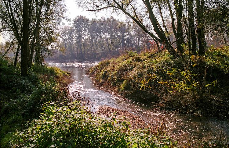 Il fiume Adda a Boffalora D'adda (Lodi) --- The river Adda in Boffalora D'adda (Lodi)