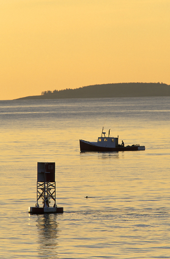 Fishing boat off the coast of Maine at sunrise, Atlantic Ocean, Maine