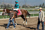 ARCADIA, CA  FEBRUARY 3 : Trainer Peter Miller congratulates Kent Desormeaux and Roy H after winning the Palos Verdes Stakes (Grade ll) on February 3, 2018, at Santa Anita Park in Arcadia, CA.(Photo by Casey Phillips/ Eclipse Sortswire/ Getty Images)