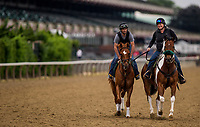 ELMONT, NY - JUNE 07: Hofburg gets ready to gallop in preparation for the 150th Belmont Stakes at Belmont Park on June 07, 2018 in Elmont, New York. (Photo by Alex Evers/Eclipse Sportswire/Getty Images)