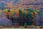 Fall foliage and Megunticook River, Camden, Maine, USA