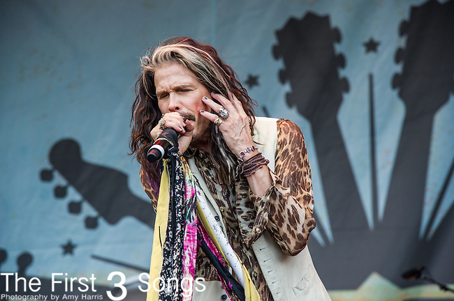 Steven Tyler performs during the 2015 Pilgrimage Music & Cultural Festival in Franklin, Tennessee.