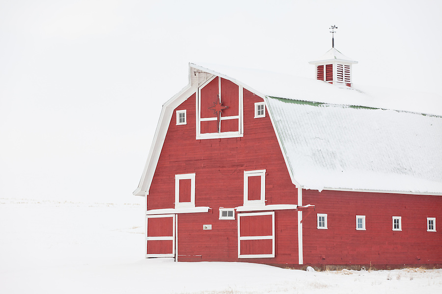 This bright red barn is nearly a hundred years old and sits tucked away in the middle of the Washington Palouse.