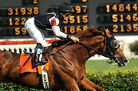 SImmard ridden by Gabriel Saez and trained by Roger Attfield win the Grade 3 Louisville Handicap at Churchill Downs in Louisville, Kentucky on Saturday May 26, 2012.