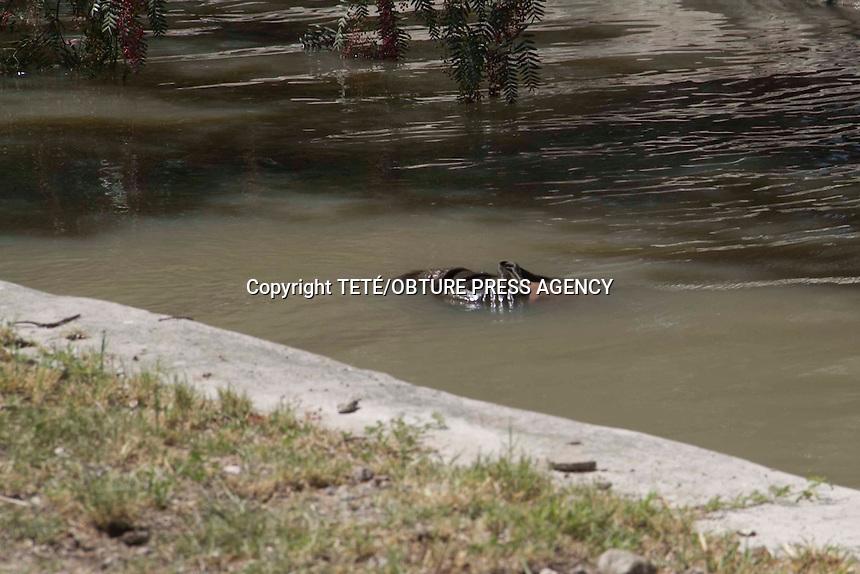 San Juan del R&iacute;o, Qro. 16 junio 2014.- Habitantes de la comunidad de San Javier, en este municipio, alertaron a las autoridades en el sentido de que en un canal de riego de  la mencionada comunidad, a espaldas del fraccionamiento San Gil, flotaba un cuerpo.<br /> Hasta el momento se desconoce la identidad y las causas de la muerte del occiso. Foto TET&Eacute;/OBTURE PRESS AGENCY;