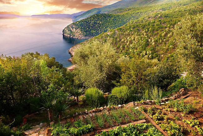 Garden in Beli hill town overlooking the harbour & cliffs, Cres Island, Croatia