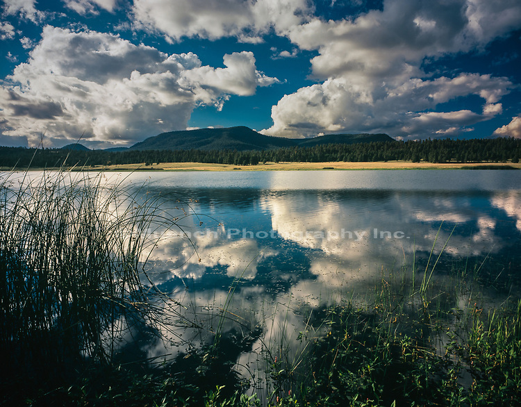 Clouds reflecting in Big Lake,White Mountains,Arizona