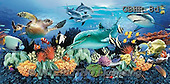 Howard, REALISTIC ANIMALS, REALISTISCHE TIERE, ANIMALES REALISTICOS, paintings++++dolphins,corral reef+,GBHR8D,#A# ,puzzles