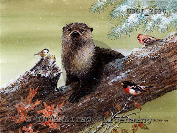 GIORDANO, CHRISTMAS ANIMALS, WEIHNACHTEN TIERE, NAVIDAD ANIMALES, paintings+++++,USGI2620,#XA#