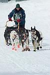 UP Midnight Run Dog sled Race ending jsut east of Munisng.  Februrary 2006