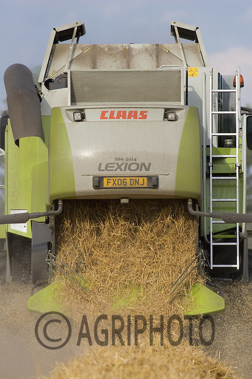Straw Coming Off The Back Of A Combine