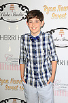 LOS ANGELES - APR 27: Diego Velazquez at Ryan Newman's Glitz and Glam Sweet 16 birthday party at the Emerson Theater on April 27, 2014 in Los Angeles, California