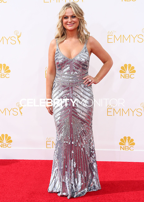 LOS ANGELES, CA, USA - AUGUST 25: Actress Amy Poehler arrives at the 66th Annual Primetime Emmy Awards held at Nokia Theatre L.A. Live on August 25, 2014 in Los Angeles, California, United States. (Photo by Celebrity Monitor)
