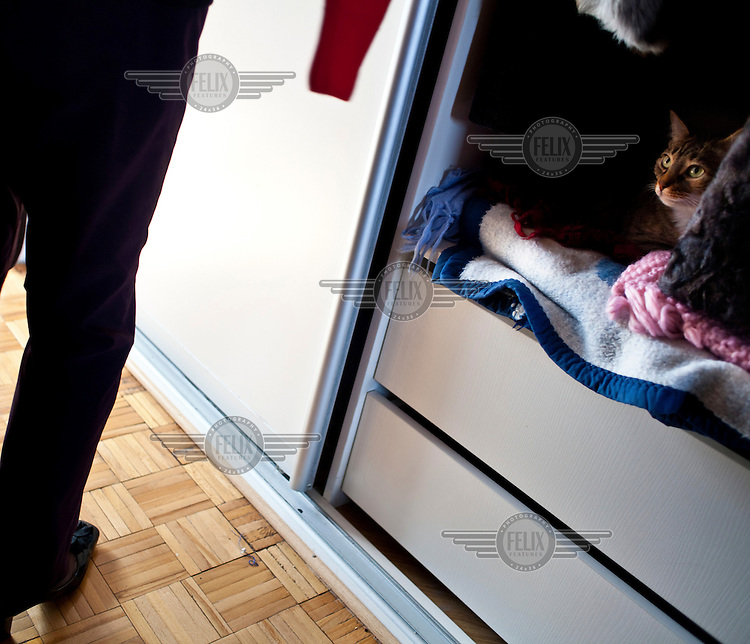 A pet cat looks out of a cupboard at the home of Wika Szmyt, a 74 year old DJ who plays for pensioners at the Bolek Club.