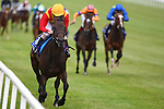 Horse Racing - The Curragh Racecourse - The Darley Irish Oaks. .The Ed Dunlop trained Snow Fairy with Ryan Moore aboard win the Darley Irish Oaks at the Curragh Racecourse