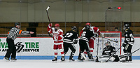Boston, Massachusetts - January 12, 2019: NCAA Division I. Boston University (white) defeated Providence College, 4-2, at Walter Brown Arena.Goal celebration.