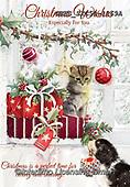 John, CHRISTMAS SYMBOLS, WEIHNACHTEN SYMBOLE, NAVIDAD SÍMBOLOS, paintings+++++,GBHSSXC50-1269A,#XX#