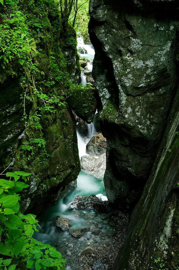 Zadlascica canyon, river Zadlascica, &quot;bears's head&quot; (medvedova glava)<br /> Triglav National Park, Slovenia<br /> June 2009