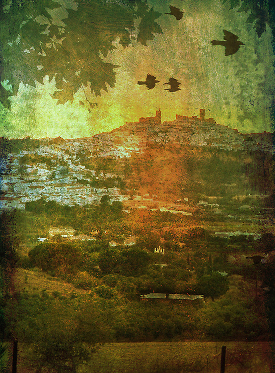 Rural view with flying birds over Spanish countryside to Arcos de la Frontera on a hillside in Andalusia Spain