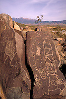 The Three Rivers Petroglyphs are outstanding examples of prehistoric Jornada Mogollon rock art. The basaltic ridge rising above the Three Rivers valley contains over 21,000 petroglyphs, including masks, sunbursts, wildlife, handprints, and geometric desig