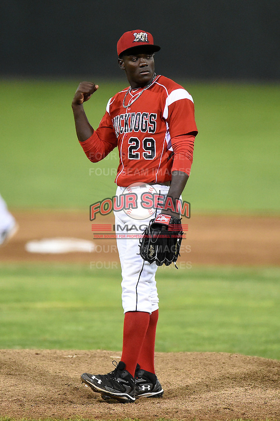 Batavia Muckdogs pitcher Juancito Martinez (29) pumps his fist after closing out a game against the Auburn Doubledays on June 14, 2014 at Dwyer Stadium in Batavia, New York.  Batavia defeated Auburn 7-2.  (Mike Janes/Four Seam Images)