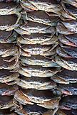 VIETNAM, Saigon, Ben Thanh Market, live crab for sale at the market, Ho Chi Minh City