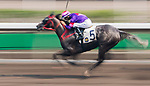 Horse Gran Master #5 ridden by Joao Moreira competes during the race 5 of HKJC Horse Racing 2017-18 at the Sha Tin Racecourse on 16 September 2017 in Hong Kong, China. Photo by Victor Fraile / Power Sport Images