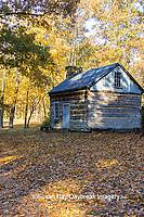 63895-16416 Cabin at Log Cabin Village in fall Kinmundy IL