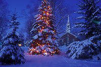 AJ5907, village, Christmas, tree, church, decoration, holiday, outdoor, snow, winter scene, Vermont, A large snow covered Christmas tree is decorated with tiny colorful lights on the Green in front of the church in the town of Jericho Center at night in Chittenden County in the state of Vermont.
