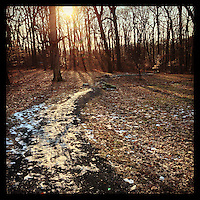 The sun shines on a snowy trail leading from Blue Bell Hill down into the Wissahickon Valley on January 2, 2013.