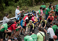 up the gruelling last climb Alto de Arraiz (up to 25% gradients!), 7km from the finish <br /> <br /> Stage 12: Circuito de Navarra to Bilbao (171km)<br /> La Vuelta 2019<br /> <br /> ©kramon