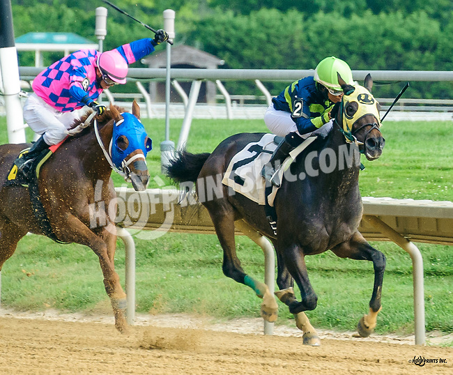 To The Flag winning at Delaware Park on 7/18/16