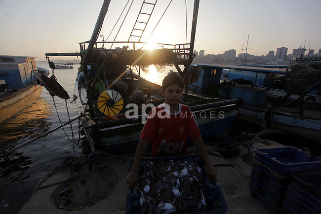 A Palestinian boy carry fish at the Gaza seaport in the west of Gaza City, 02 September 2013. The Egyptian navy boats attacked the Palestinian boats off the southern Gaza Strip last Friday, near the border with Egypt, wounding fishermen and the arrest of 5 fishermen. Photo by Ashraf Amra