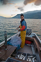 Europe/France/Rhône-Alpes/73/Savoie/Le Bourget-du-Lac/Bourdeau: Olivier Parpillon, pêcheur professionnel sur le   Lac du Bourget à la pêche au lavaret ou féra [Autorisation : A12-3005]
