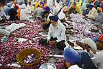Indien, Punjab, Amritsar, Goldener Tempel, Heiligtum der Sikhs, Freiwillige schaelen Zwiebeln in der Tempelkueche &quot;Langar&quot;<br /> <br /> engl.: Kitchen, preparation, onion, cutting, Sikh, Sikhism, men, people, helping, volunteers, devotees, service, Golden Temple, Community Kitchen, Amritsar, India, religion, religious, travel, food, tourism