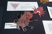 OrigamiUSA 2014 exhibition. Origami octopus designed by Chad Killeen