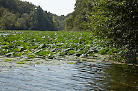 LAKE_LOCATION_75143