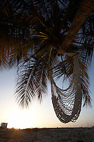 Anguilla, Caribbean - Rope chair hanging from palm tree in Sandy Ground on the west side of the island.