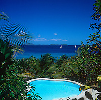 The villa benefits from an amorphous swimming pool shielded by palm trees with a spectacular view over the sea