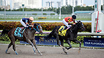HALLANDALE BEACH, FL - JAN 06: Cicatrix #4 with Julien Leparoux in the irons crosses the finishing line and wins The $75,000 Glitter Woman Stakes for trainer Ian R. Wilkes at Gulfstream Park on January 6, 2018 in Hallandale Beach, Florida. (Photo by Bob Aaron/Eclipse Sportswire/Getty Images)