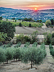 Sunset over the hills and farms, Forli, Italy