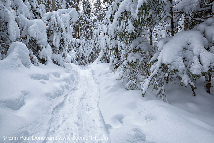 Greeley Pond Trail in the White Mountains, New Hampshire USA during the winter months,
