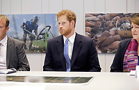 15 June 2017 - London, England - Prince Harry speaks to people during his visit to Chatham House, the Royal Institute of International Affairs, in London. Prince Harry visited Thursday to open their new extension, The Stavros Niarchos Foundation Floor, which will provide a permanent home for the Queen Elizabeth II Academy for Leadership in International Affairs, along with new meeting and work spaces. Photo Credit: Alpha Press/AdMedia
