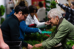 BETHLEHEM, CT. 06 December 2018-120618 - Sue March, owner of March Farms, right, helps assist Tiffany Estrada of Woodbury with her wreath during the annual Wreath making social event at March Farms in Bethlehem on Thursday. Sue March the owner of March Farms says for everyone to sig up and get your spots early next year as they went very quickly this year. Bill Shettle Republican-American