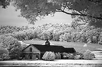 20091101_Kluge_Estate_Infrared