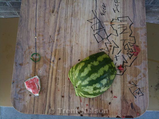 . Sunday, October 18 2009.watermelon