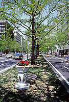Osaka: Median strip with trees and pottery. Photo '82.
