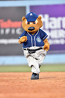 Asheville Tourists mascot Ted E Tourists runs the bases during a game against the Columbia Fireflies at McCormick Field on April 12, 2018 in Asheville, North Carolina. The Fireflies defeated the Tourists 7-5. (Tony Farlow/Four Seam Images)