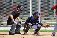 Home plate umpire Reed Basner and Minnesota Twins Rafael Valera (38) during an instructional league game against the Boston Red Sox on September 26, 2015 at CenturyLink Sports Complex in Fort Myers, Florida.  (Mike Janes/Four Seam Images)