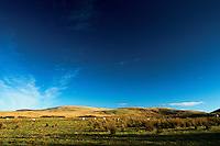 Bell's Hill and Harbour Hill from Harlaw Reservoir, The Pentland Hills, The Pentland Hills Regional Park, Lothian